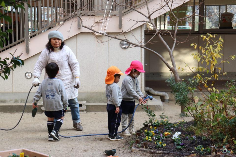 せんりひじり幼稚園でお花に水をあげる園児