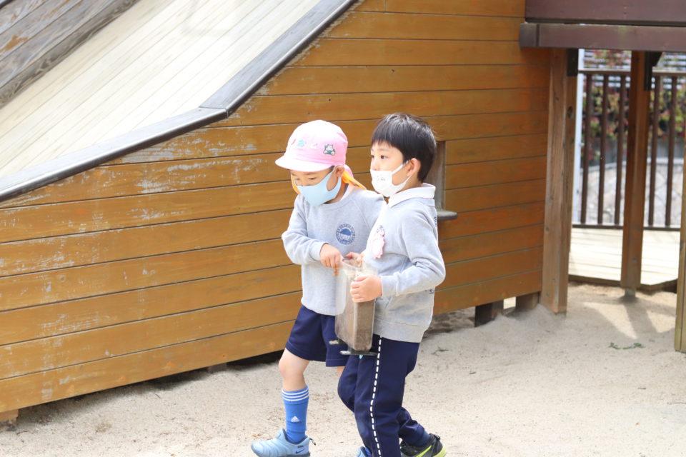アリの家を運んでいる園児達