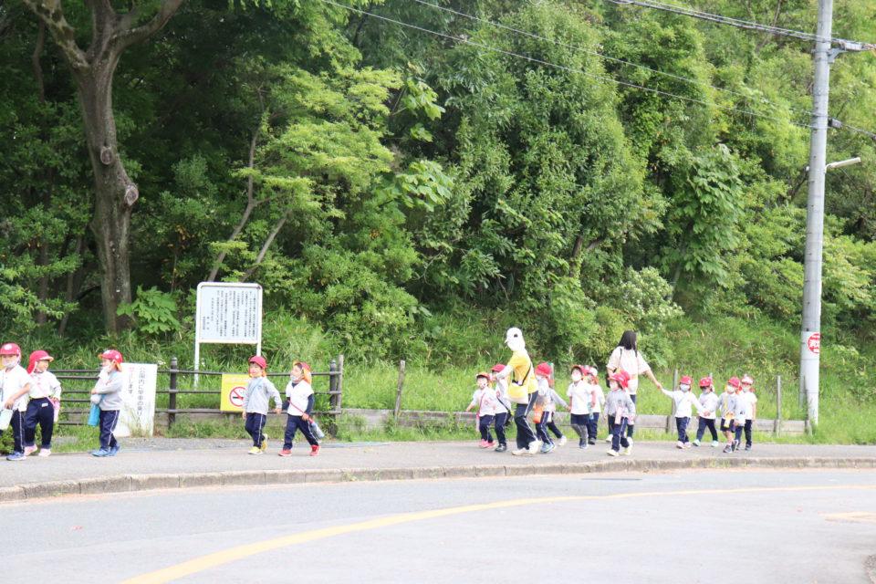幼稚園の遠足風景