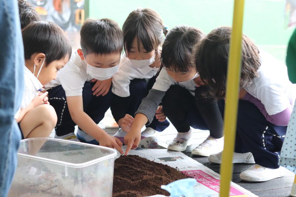 虫の土を覗き込んでいる園児達