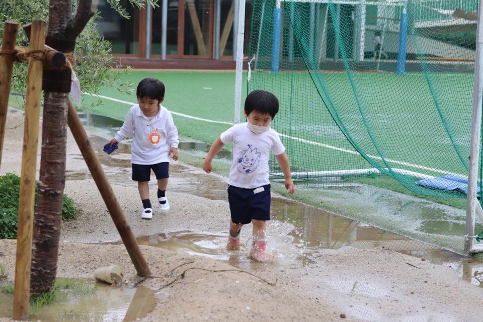園庭の水たまりで遊んでいる園児