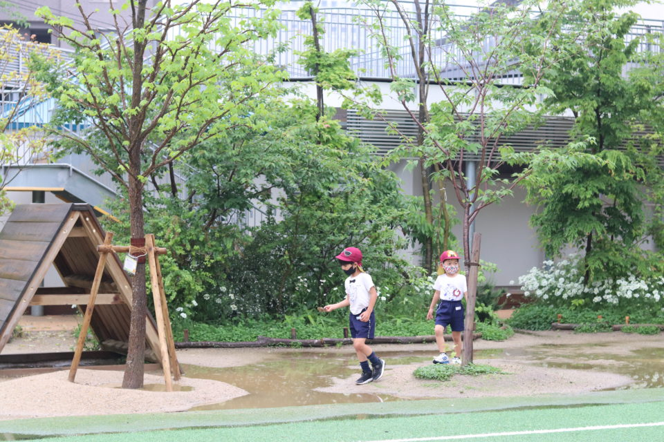 園庭の水たまりで遊んでいる園児達